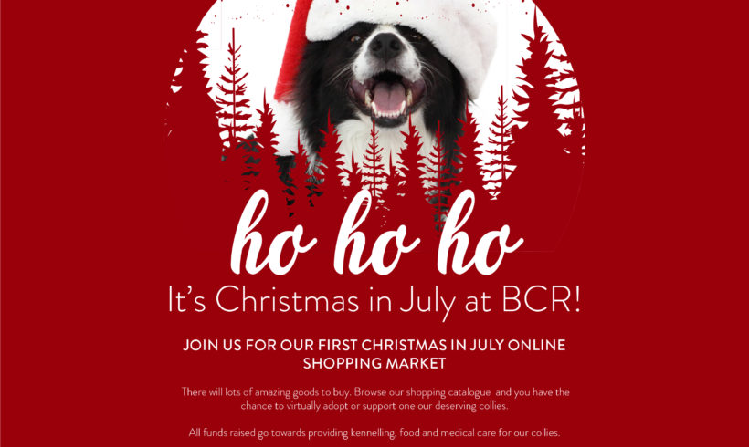 CHRISTMAS IN JULY 24th and 25th ONLINE