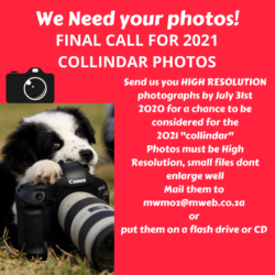FINAL CALL FOR 2021 COLLINDAR PHOTOS