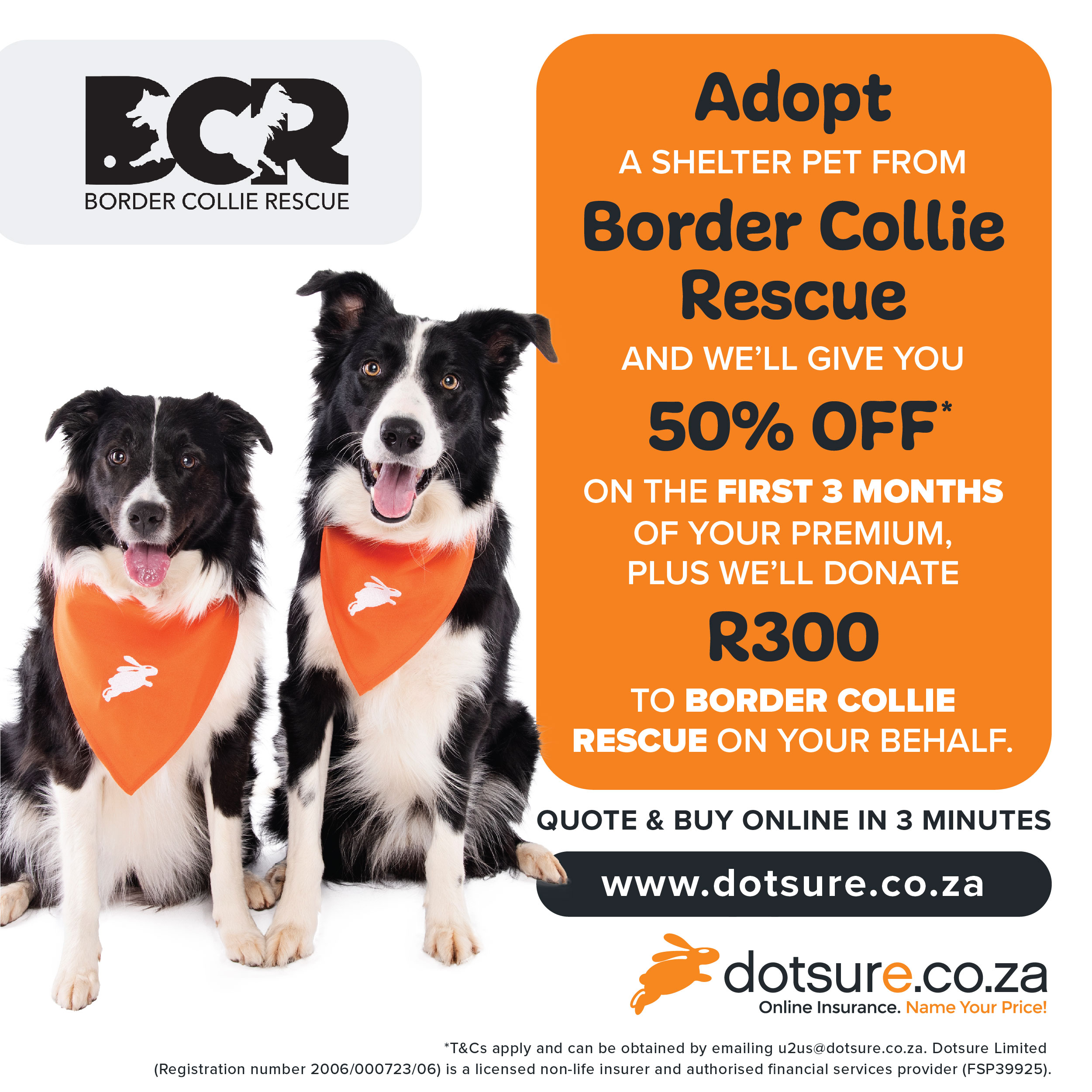 20 OFF YOUR FIRST 20 PREMIUMS WITH DOTSURE – Border Collie Rescue